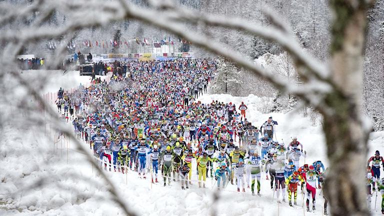 2014 Vasaloppet