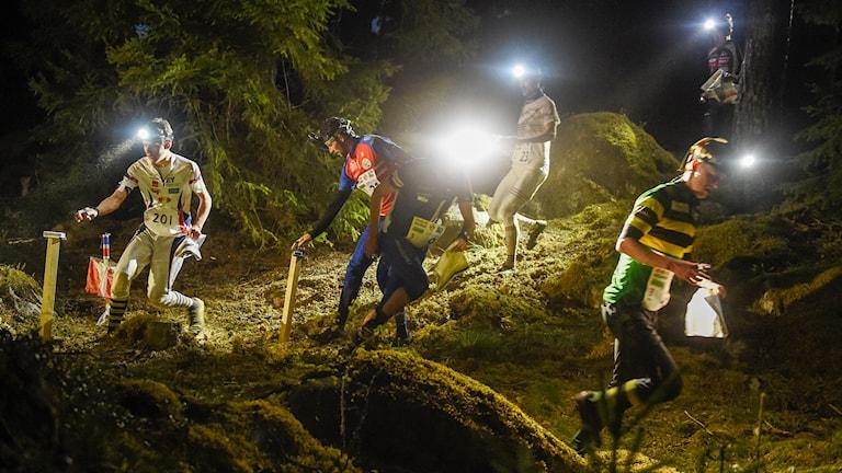 20140504 Starten i stafetttävlingen Tiomila under natten mellan lördag och söndag på Ränneslätt i Eksjö. Foto: Mikael Fritzon/TT