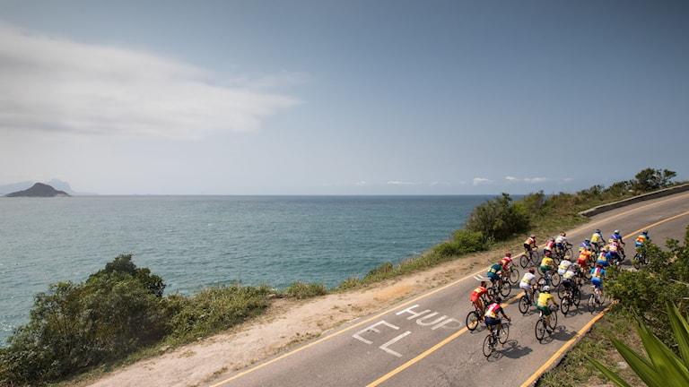 Cyklister på en väg vid havet.