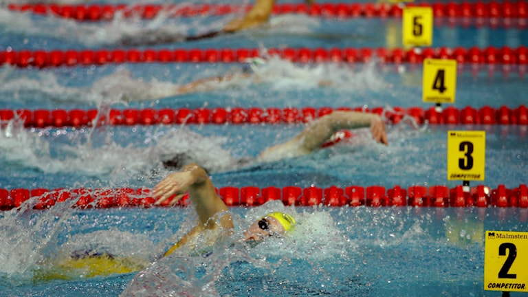 Simning, arkivbild. Foto: AP/TT