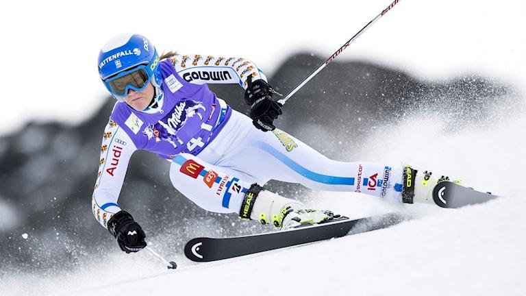 Anna Swenn-Larsson
