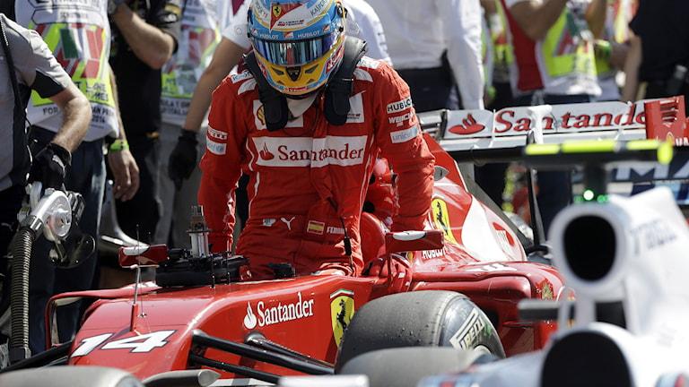 Fernando Alonso kliver ur sin Ferrari. Foto: Luca Bruno/TT.