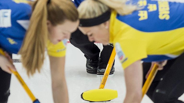 2014, Svensk curlingseger. Foto: TT Nyhetsbyrån