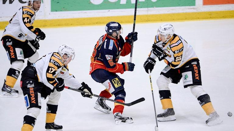 2014, Tre spelare i Skellefteå. Foto: TT Nyhetsbyrån
