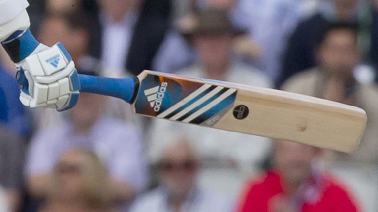 Cricket, arkivbild. Foto: Jon Super/AP/TT