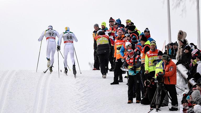 2014-11-30 Daniel Richardsson och Calle Halfvarsson under herrarnas 15 km (k) vid söndagens världscuptävlingar i finska Ruka. Foto: Anders Wiklund/TT