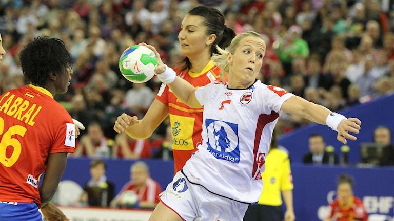 2014, Norge vann EM-guld. Foto: TT Nyhetsbyrån