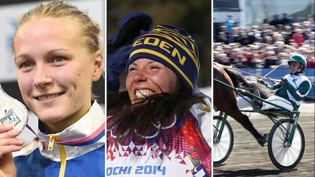 Collage Sarah Sjöström Charlotte Kalla Örjan Kihlström. Foto: TT, collage SR