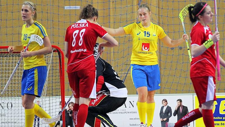Polen-Sverige, VM-kval innebandy, Foto: Calle Ström