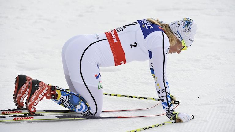 2015, Hanna Falk. Foto: TT Nyhetsbyrån