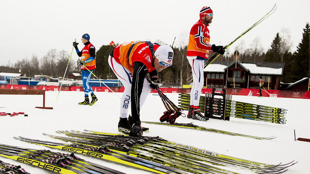 Norges landslagstränare Trond Nystad och landslagschef Vidar Løfshus. Foto: Vegard Wivestad Grøtt/NTB scanpix/TT