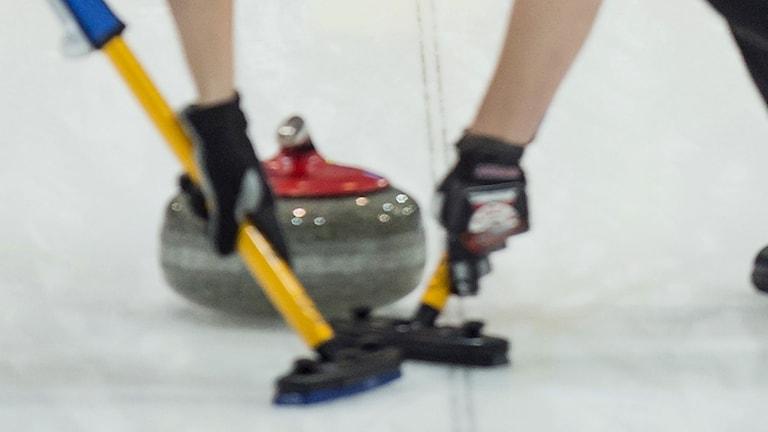 Curling genrebild, Foto: TT