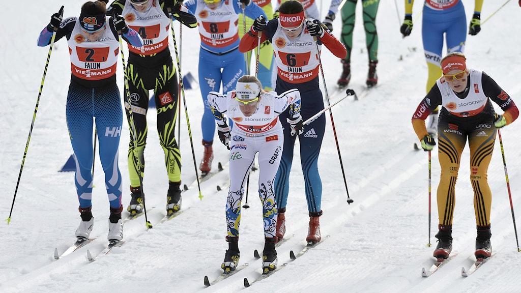 Damernas stafett i Falun. Foto: TT