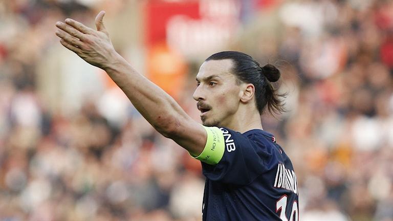 Zlatan Ibrahimovic. Foto: Michel Euler/AP/TT