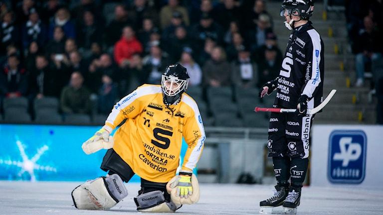 Bandyns seriesystem görs om. Allsvenskan bantas från 24 till 16 lag och de två allsvenska serierna slås ihop till en. Foto: Marcus Ericsson/TT