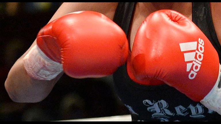 Boxning, arkivbild. Foto: Fredrik Sandberg/TT