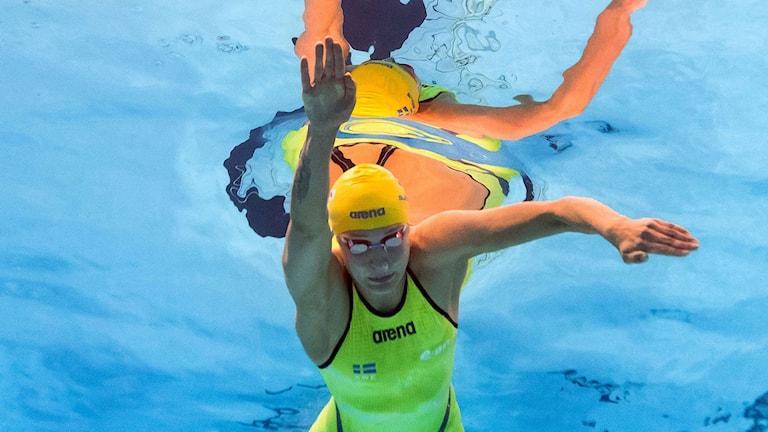 Sarah Sjöström simmade den fjärde sträckan i lagkappen. Foto: AFP/TT