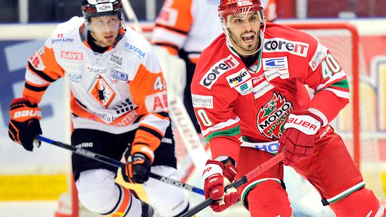ÖRNSKÖLDSVIK 20150919 Modos Maxim Lapierre tar i under lördagskvällens SHL-match i ishockey mellan MODO Hockey och Karlskrona i Fjällräven Center, Örnsköldsvik. Foto: Håkan Nordström / TT.