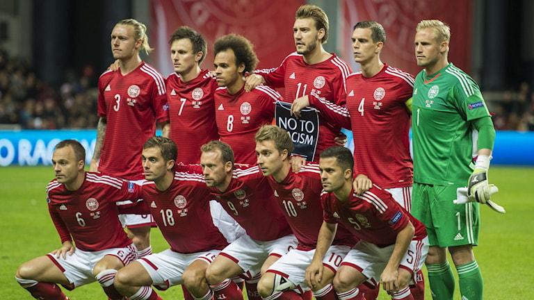 Danmarks landslag