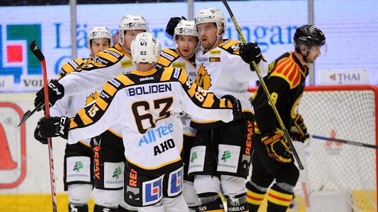 Skellefteå-jubel efter seger över Brynäs. Foto: TT Nyhetsbyrån