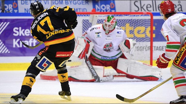 SKELLEFTEÅ 2015-10-24 Skellefteås Pär Lindholm gör 2-0 bakom Adam Reideborn i Modo-målet under lördagens SHL-match i ishockey mellan Skellefteå AIK och Modo Hockey i Skellefteå Kraft Arena. Foto: Robert Granström / TT