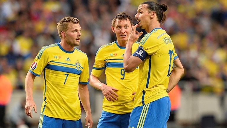 Sebastian Larsson, Kim Källström och Zlatan Ibrahimovic. Foto: TT