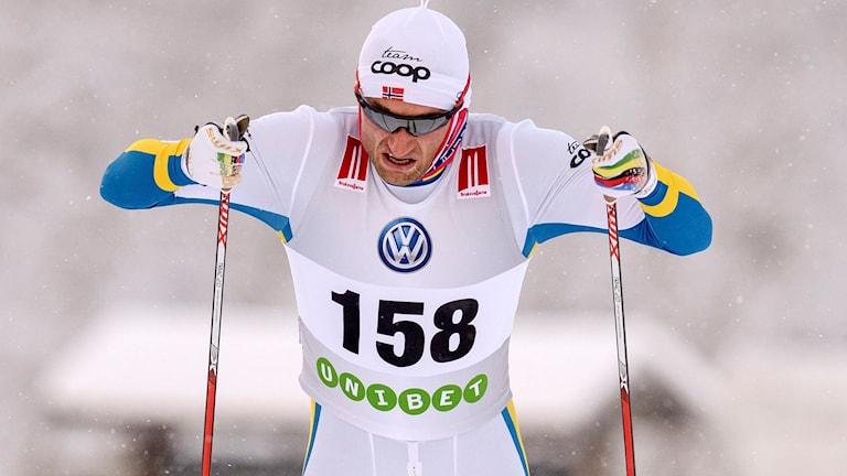 Petter Northug. Foto: TT