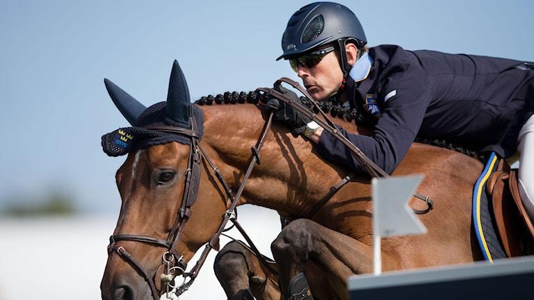 Peder Fredricson på hästen H&M All in på Falsterbo Horse show. Foto: Andreas Hillergren/TT
