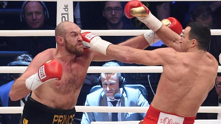 Tyson Fury och Volodymyr Klytjko möts i boxningsringen.