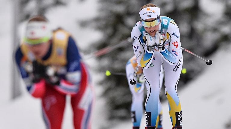 20151129 Stina Nilsson vid söndagens världscup jaktstart över 10 kilometer klassisk stil i Ruka. Foto: Anders WIklund / TT