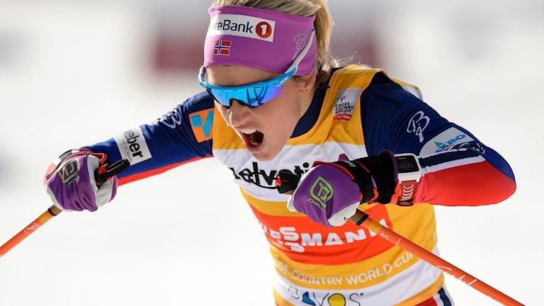Therese Johaug. Foto: FABRICE COFFRINI/TT.