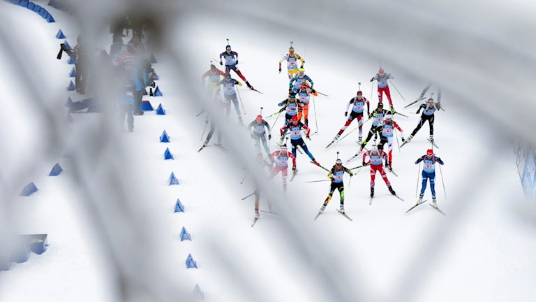 Skidskyttetävling i Oberhof i januari 2015