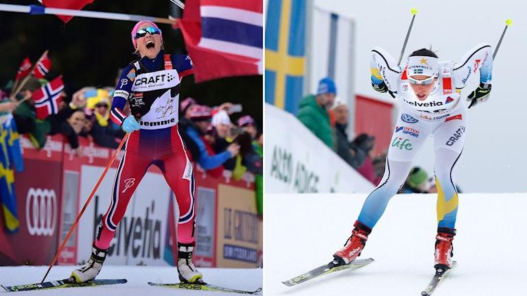 Therese Johaug var överlägsen i Tour de Ski, Charlotte Kalla blev fyra. Foto: TT