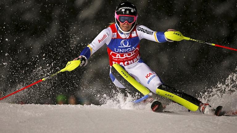 Frida Hansdotter i ett snöigt Flachau. Foto: AP Photo/Marco Trovati/TT