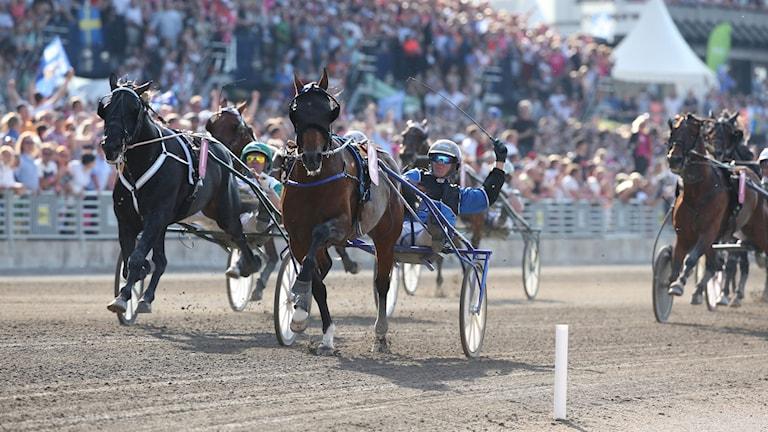 STOCKHOLM 20140525 Franska hästen Timoko med kusken Björn Goop vinner Elitloppet 2014 på Solvalla. Foto: Sören Andersson / TT