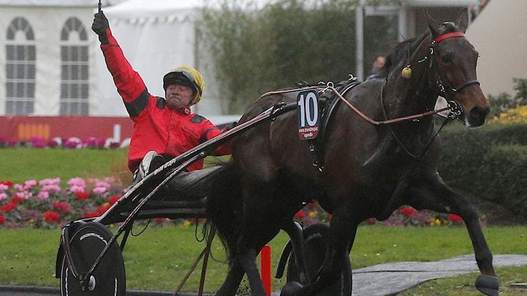 Franck Nivard och Bold Eagle vann på Vincennes-banan. Foto: AP Photo/Christophe Ena/TT