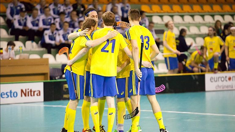 Arkivbild. Sverige jublar efter att ha besegrat Ryssland i VM-kvalet. Foto: Internationella Innebandyförbundet