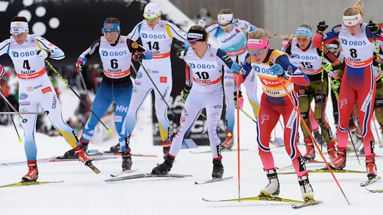 Damernas masstart på 10 km i Falun. Foto: TT