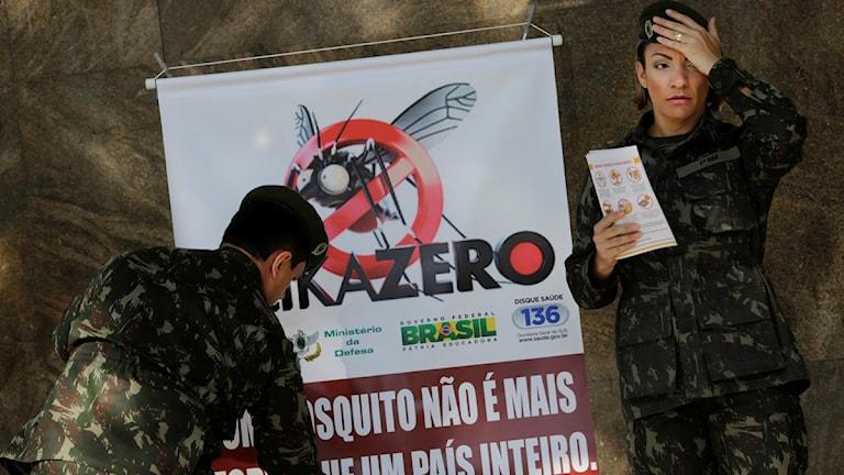 Brasilianska soldater sätter upp varningsskyltar om Zikaviruset. Foto: Silvia Izquierdo/TT