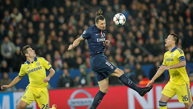 20150217 PSG mot Chelsea, Zlatan Ibrahimovic nickar. Foto: Christophe Ena/TT