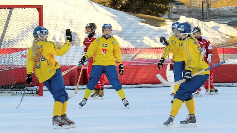 Bandy damlandslaget jublar vid söndagens match mot Kanada. Foto: Svenska Bandyförbundet.