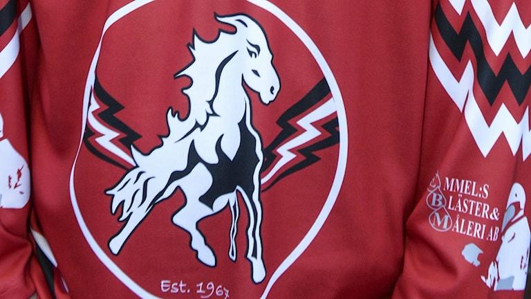 Vita Hästen (he)