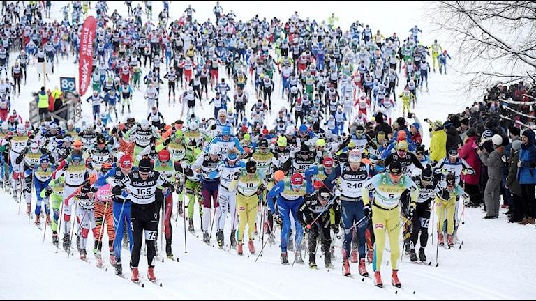 SÄLEN 2016-03-06 Täten efter starten av Vasaloppet 2016 i Berga by.