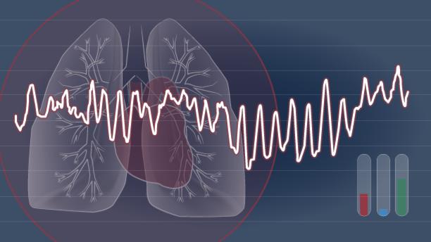 Illustration HRV. Visar hjärta, lungor och kurva över hjärtrytm