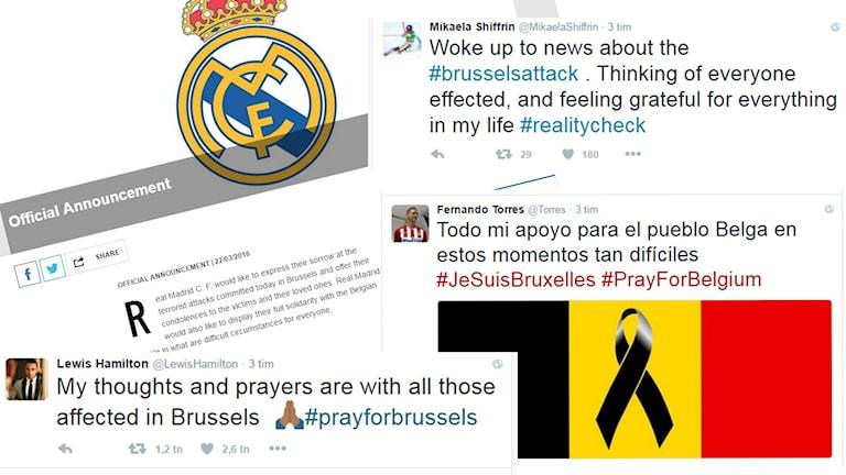 Idrottsvärldens reaktioner efter bombdåden i Bryssel.