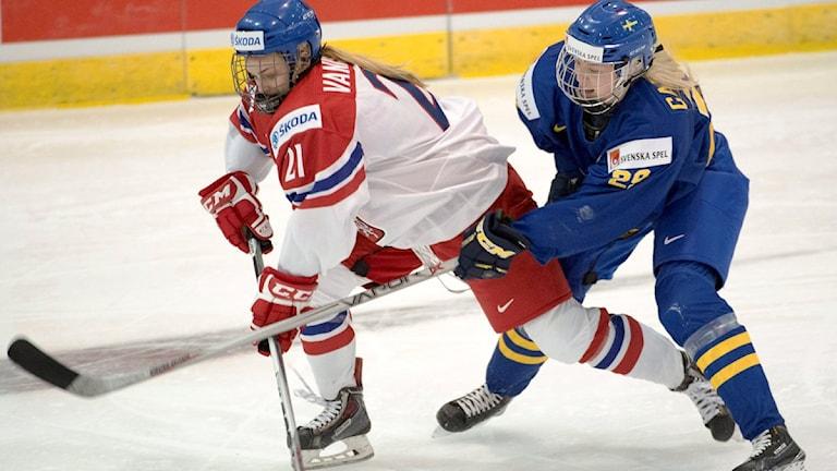 20160328 Tjeckiens Tereza Vanisova mot Damkronornas Olivia Carlsson i ishockey-VM i Kamloops, Kanada. (Ryan Remiorz/The Canadian Press via AP)