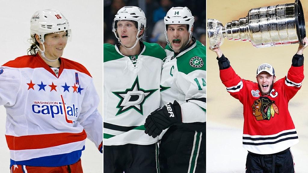 Collage inför NHL-slutspelet. Foto: TT