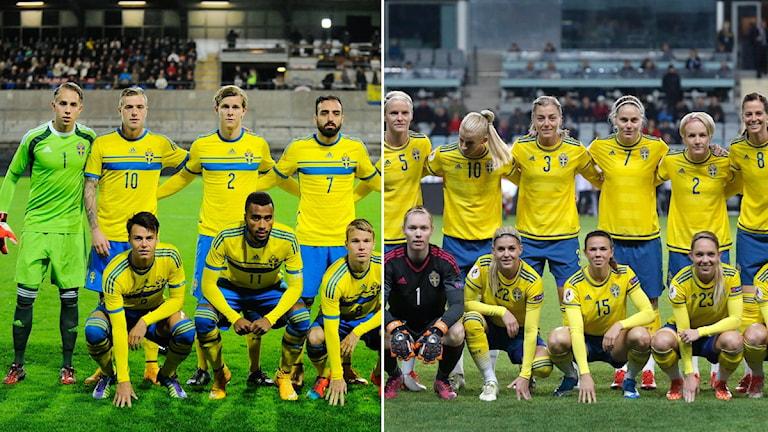 Lagbilder herr- och damlandslaget. Foto: TT