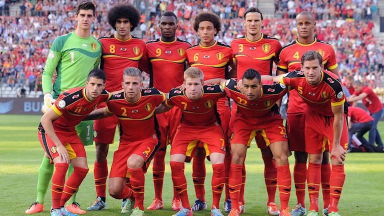 Det belgiska landslaget i VM i Brasilien
