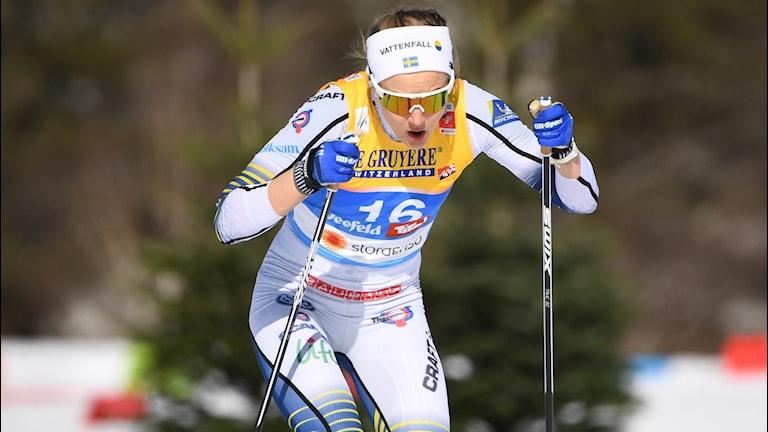 SEEFELD 20190221 Stina Nilsson under damernas sprint kval vid skid-VM i Seefeld.  Foto Fredrik Sandberg / TT